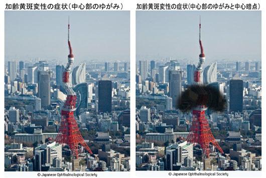 024_kareiouhanhensei02.jpg