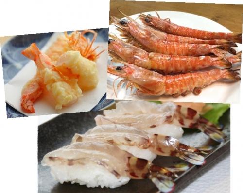 秋の海産物料理では車エビの天ぷらや塩焼きお寿司もいいなぁ