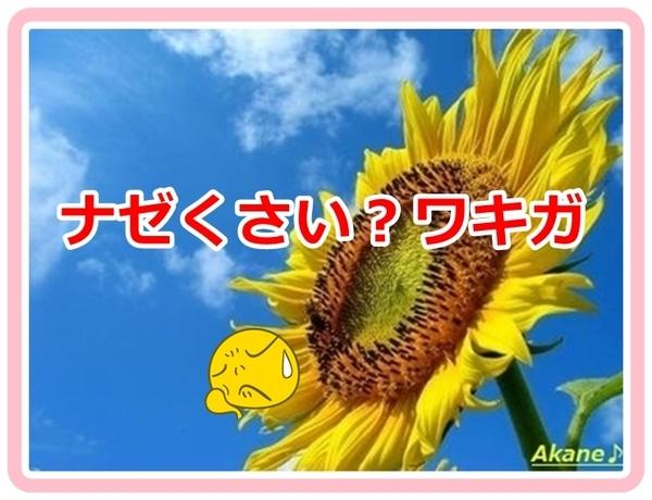 Summer_akane01_vvvv8899.jpg