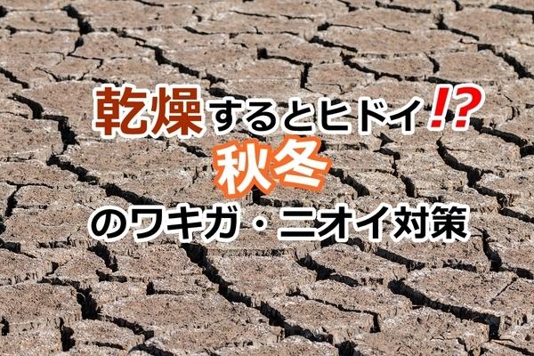 akane-akikanso_001.jpg
