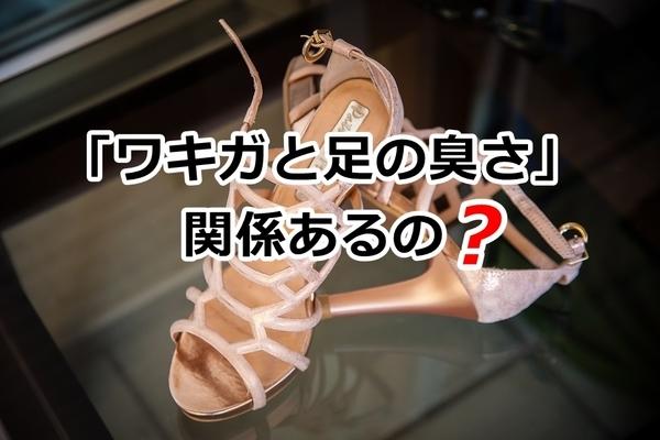 akane-ashikusa_bb002.jpg