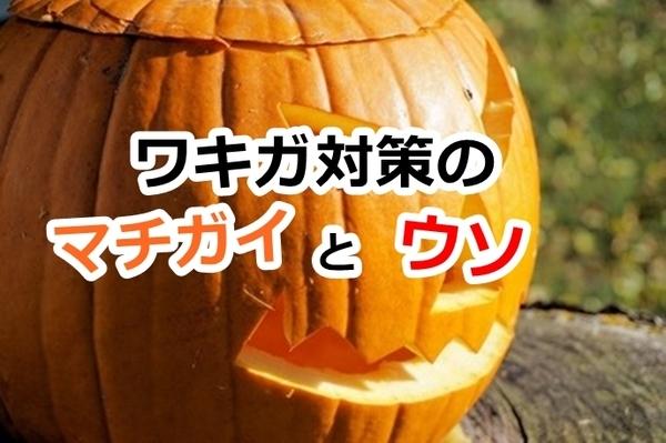 akane-blog_ddf001.jpg
