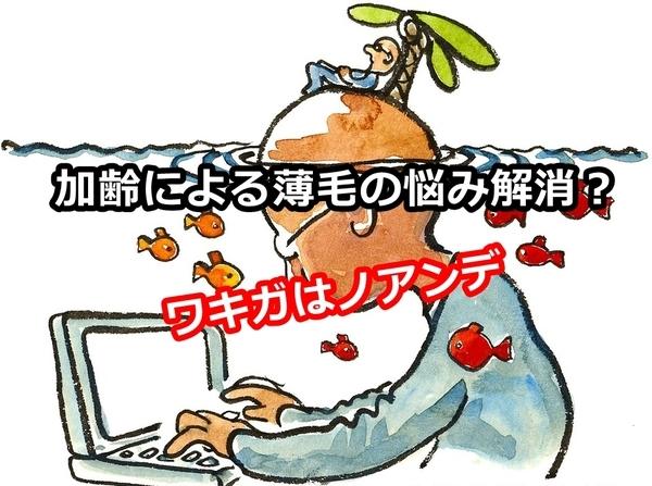 akane-blog_ded001.jpg