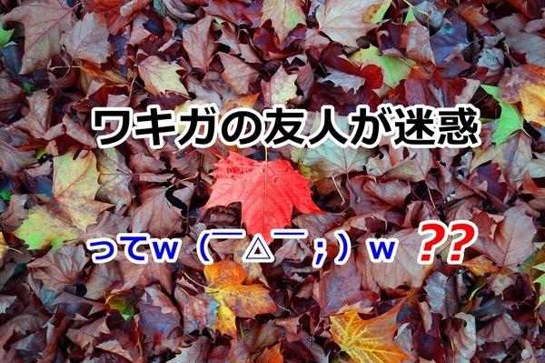 akane-blog_eoo001.jpg