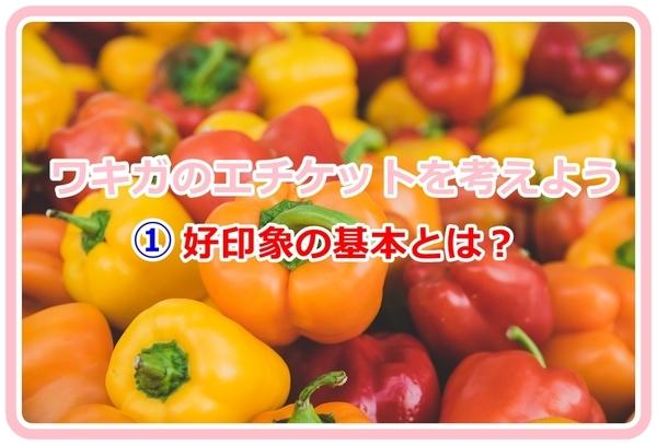 akane-blog_ggfd001.jpg