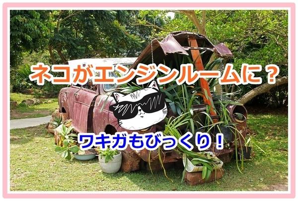 akane-blog_hyut001.jpg