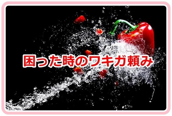 akane-blog_jdf002.jpg