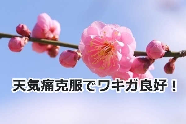 akane-blog_jjy001.jpg