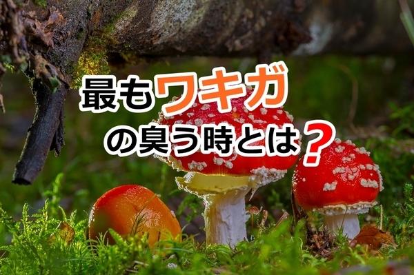 akane-blog_jkm001.jpg