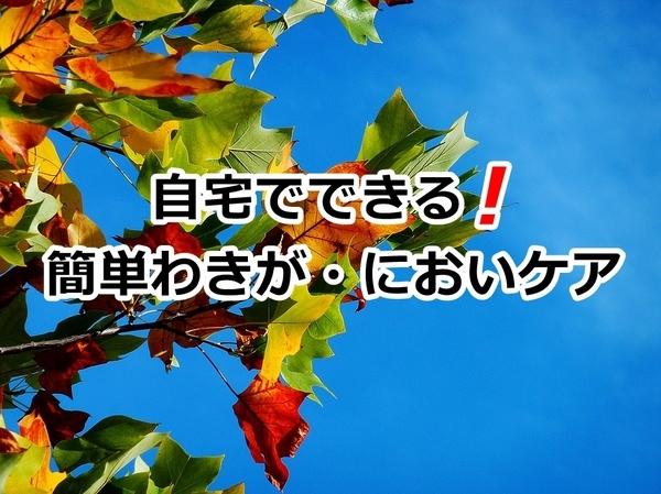 akane-blog_ksh001.jpg