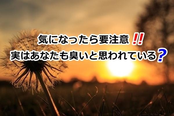 akane-blog_luy002.jpg