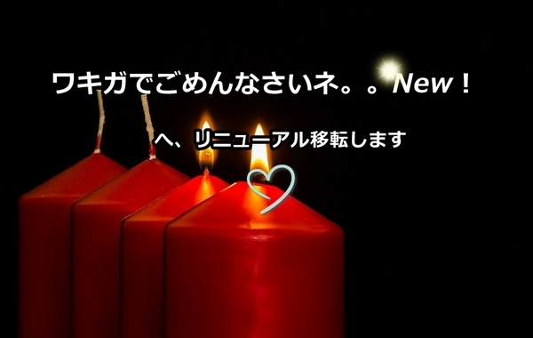 akane-blog_newwakiga001.jpg
