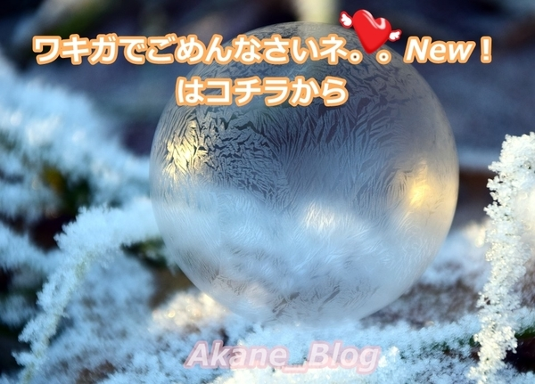 akane-blog_newwakiga006.jpg