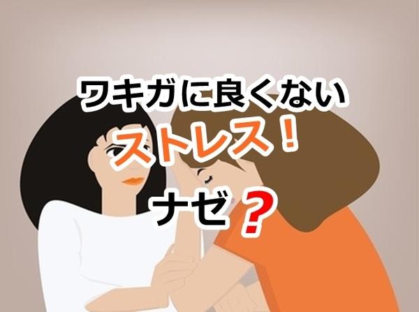 akane-blog_syb001.jpg