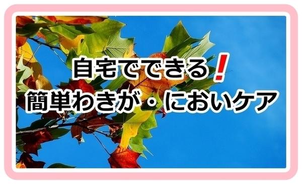 akane-blog_vvbv1801.jpg
