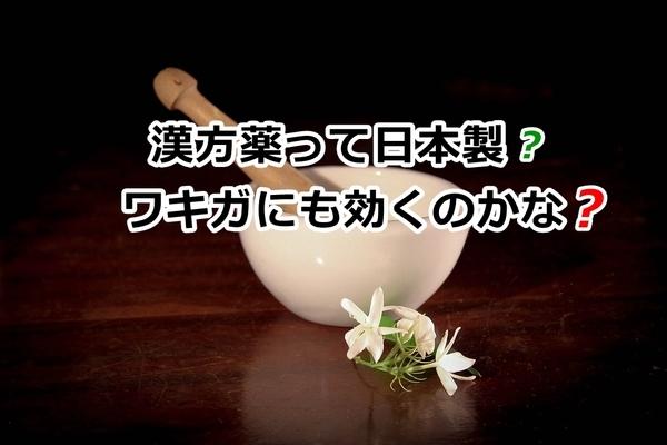 akane-blog_wpp001.jpg