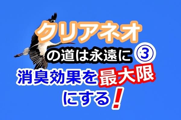 akane-cle_tukaikata001.jpg