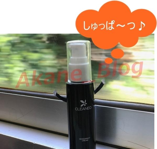 akane-cleaneo_hakata002.jpg