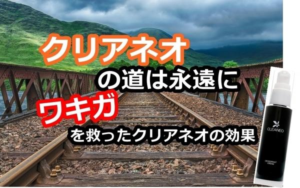 akane-cleaneo_new333.jpg