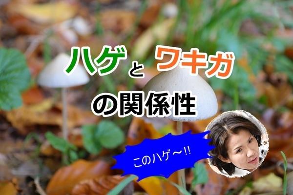 akane-hagewakiga_gg003.jpg