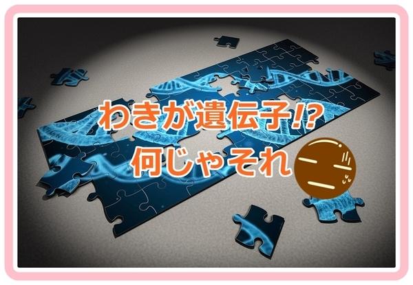 akane-idenshi_001.jpg