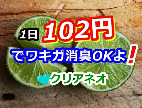 akane-otoku_cleaneo333.jpg
