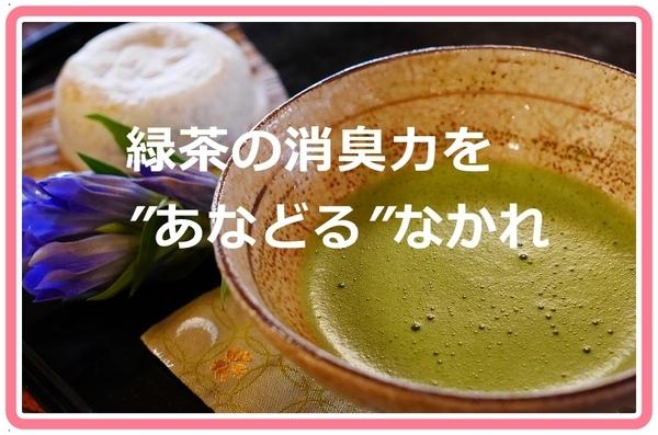 akane-otya_vvv001.jpg