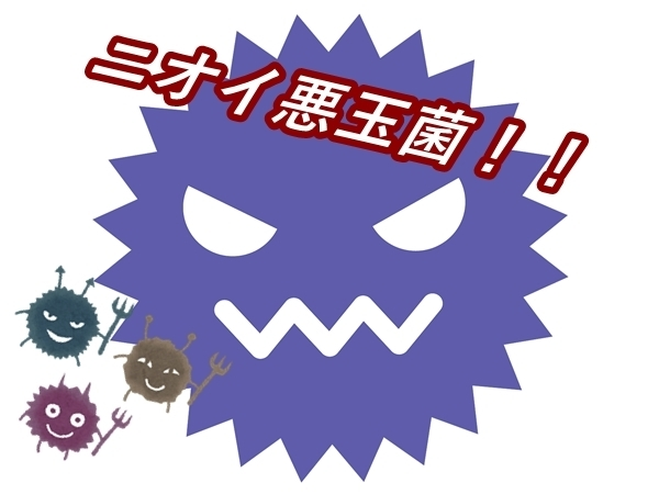 akane-shiwasu_cv003.jpg