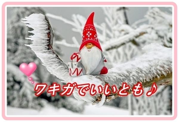 akane-shiwasu_cv657.jpg