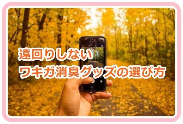 akane-syosyu_b001.jpg