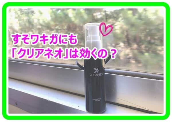 akane-ume_vv1805.jpg