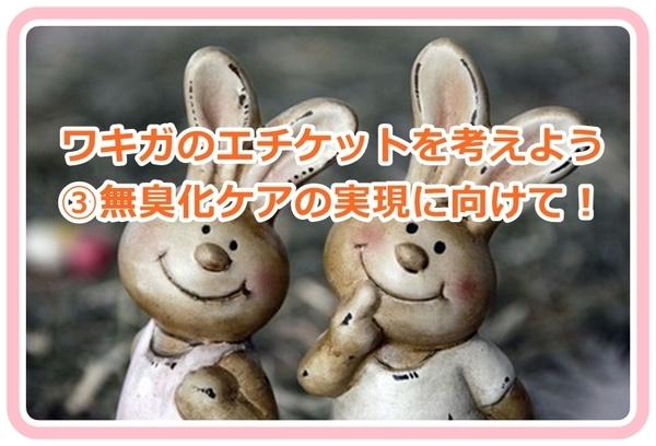 akane-wakiga_care8888.jpg