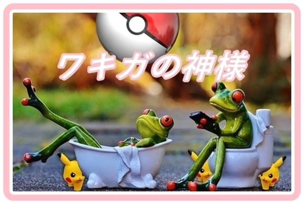 akane-wakiga_kami9867.jpg