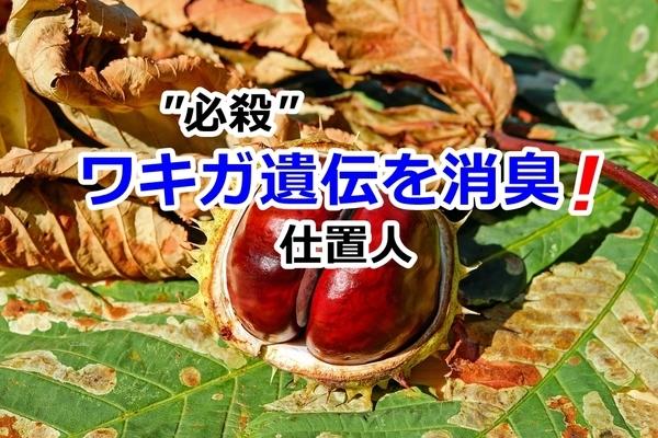 akane-wakigaiden_j001.jpg