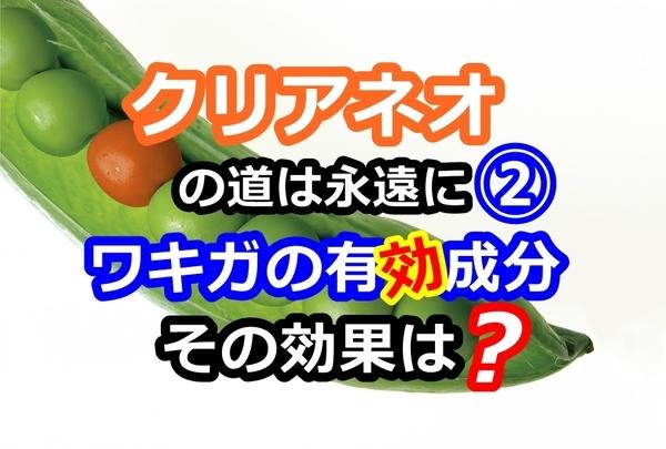 akane-wakigasebun_001.jpg