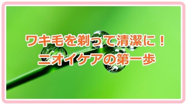 akane-wakige_vvbv001.jpg
