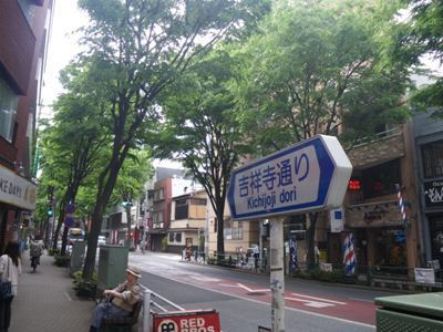 akane_kitijyoji01.jpg