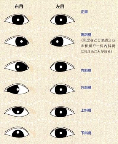 jakushi01.jpg
