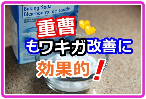 komoko-jyuso_n001.jpg