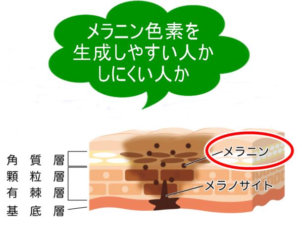 kurozumi-btop_n002-600x370.png