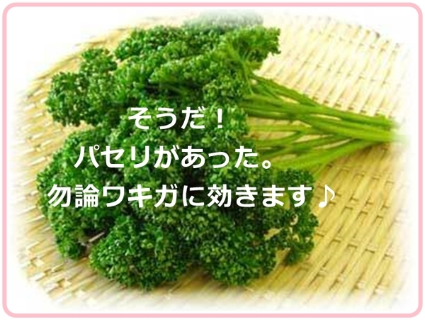 parsley_vvvv9987.jpg