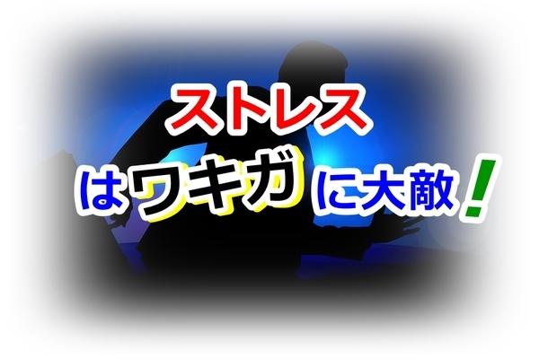 wakiga-stress_mm001.jpg