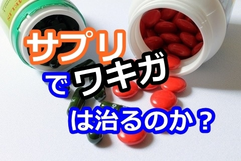 wakiga-supplement_l001.jpg