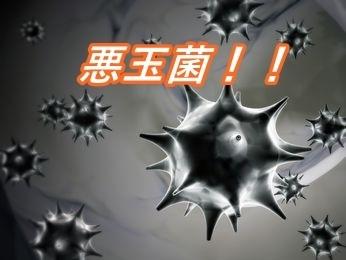 wakiga-syujyutu_mm002.jpg