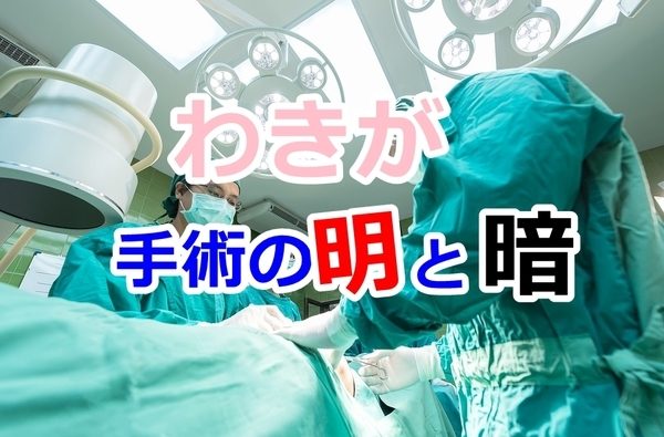 wakiga-syujyutu_n001.jpg