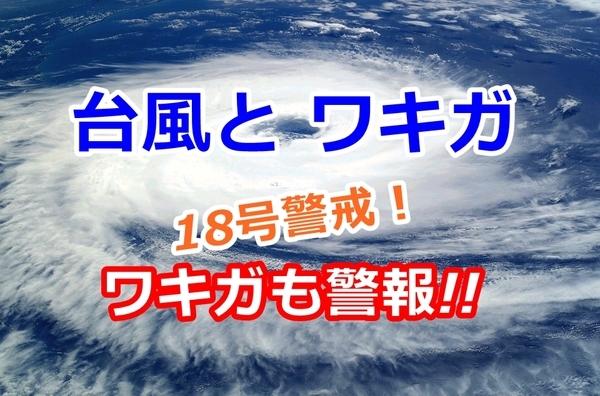 wakiga-taihu_001.jpg